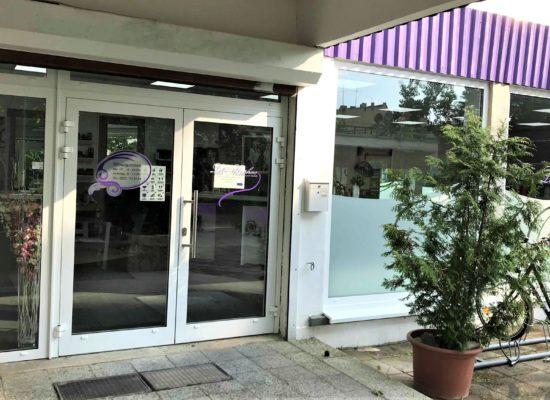 ALU-Eingangstür mit Sicherheitsverglasung